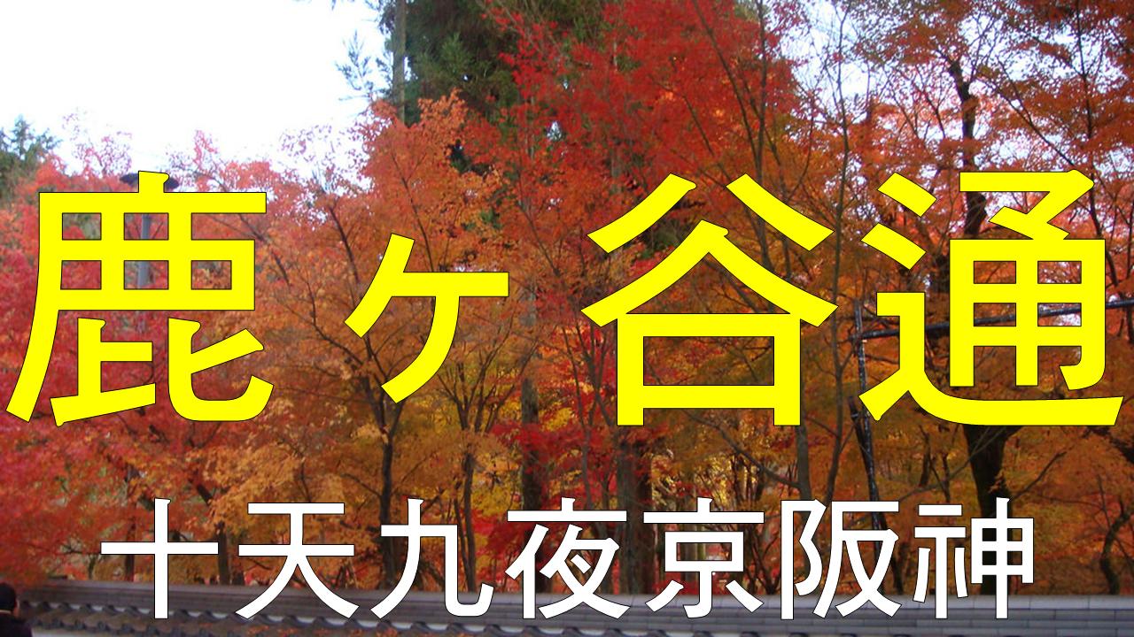二度蜜月 day8 串連【禪林寺永觀堂】與【南禪寺】,漫步在充滿味道的【鹿ヶ谷通】